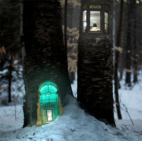 Woodhouses-Miniature-Urban-Forest-1